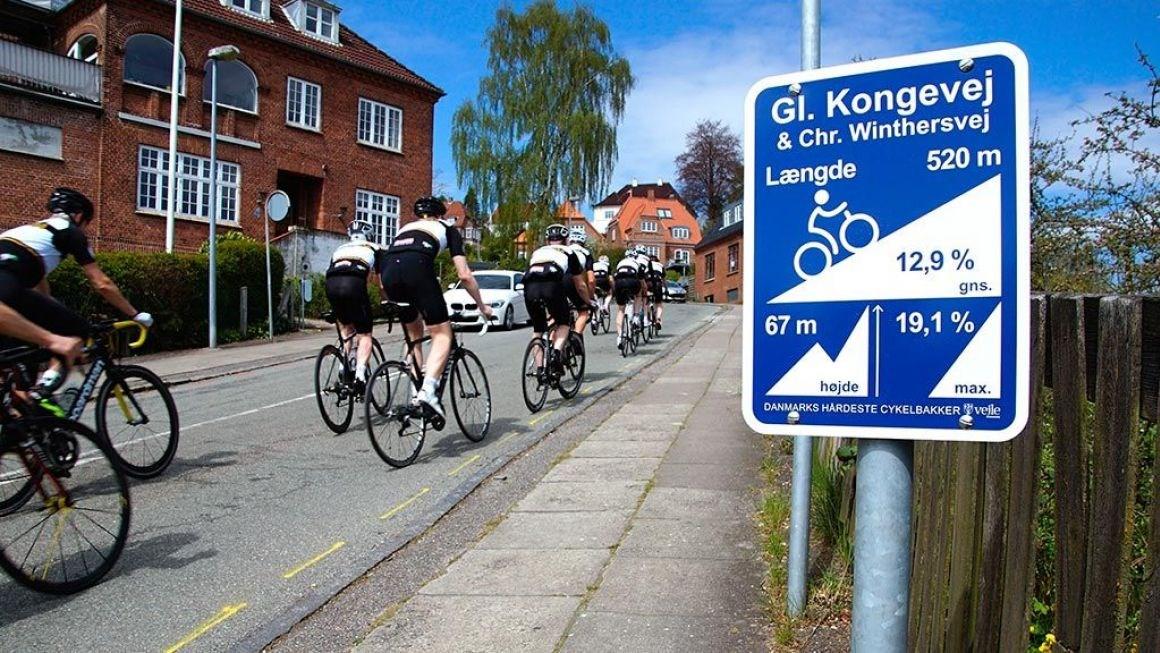 Cykelruter Vejle Kommune